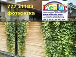 Фотосетка Рада - оригинальное оформление загрождения, фасада - фото 3