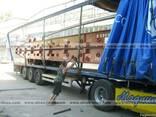 Международные автоперевозки грузов - фото 3