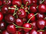 Молдавская черешня! Крупноплод - photo 1