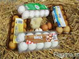 Packaging for eggs, berries, fruits, meat, biscuits