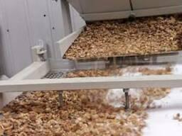 Переработка грецких орехов