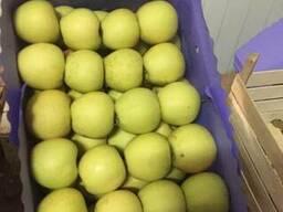 Продаем яблоки Молдавские высшего качества. Отборные. Сортир