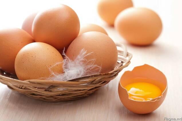 Продам яйцо куриное из Молдовы