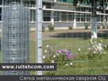 Сетка металлическая в Молдове. Заборы. Проволока. Plasa meta - фото 2