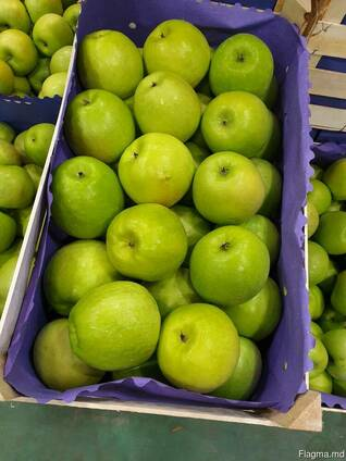Свежие фрукты и овощи - из Молдовы и Сербии